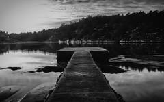 Alone (Ludvius) Tags: ludovicophotography wwwludovicophotocom