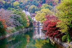 Arashiyama Autumn Canal (Jake in Japan) Tags: autumn trees tree fall japan canal kyoto sony foliage arashiyama        apsc a6000 sel1670z e1670mmf4zaoss 6000 ilce6000 jakejung