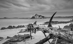 Carantec - Bretagne - France (NICOLAS BELLO) Tags: trees light sea sky blackandwhite bw cloud mer france tree castle beach nature monochrome beautiful rock stone architecture landscape amazing sand marine rocks noiretblanc stones sony marin bretagne lumiere beaches chateau paysage plage baw phrare