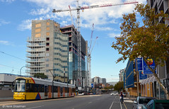Transforming North Terrace (railfan3) Tags: autumn building public construction metro trolley transport australian tram australia cranes transportation transit highrise adelaide inprogress sa southaustralia trams tramway trolleys 108 bombardier streetcars northterrace 2016 tramways triebwagen adelaidemetro tramcars strasenbahn flexity 101115 adelaidetram adelaidetrams ngt8 strassenbahnwagen metroadelaide tramwagens trammaterieel