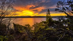 Ryksund, Norway (Vest der ute) Tags: trees sea seascape norway clouds sunrise reflections rogaland fav25 fav200 ryksund