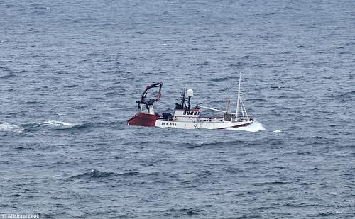 Twin rig trawler Deeside BCK 595