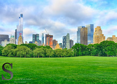 High rises buildings riding up over the fields in Central park (Singing With Light) Tags: 2016 2nd alpha6000 central columbuscircle milford mirrorless morningstroll ny nyc nycfog singingwithlight sonya6000 july photography singingwithlightphotography sony