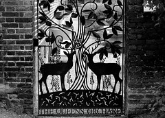 The Queen's Orchard (phoebe.horner) Tags: park trees people white black colour tree monochrome fence landscape photography landscapes photo photographer view edited greenwich royal parks fences squirrell cutty sark