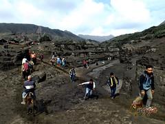 Bromo Canyon (anggocc201) Tags: tourism nature indonesia mount gunung jawa timur bromo tengger pemandangan wisata eastjava pariwisata