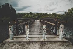 (- Anthony Papa -) Tags: canon5dmkii canon anthony papa bridge emoji faces grafitii amazing blue sky vintage matte grunge water lake everglades florida green trees nature