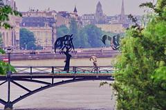 Paris Juin 2016 - 261 sculptures sur le Pont des Arts (paspog) Tags: sculpture paris france statue seine arts statues pont sculptures inondation crue pontdesarts inondations crues