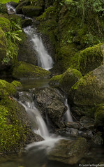cascata (Luke) Tags: natura acqua seta bosco cascata sottobosco
