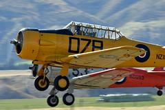 Harvards from the Roaring Forties display team. (GJC1) Tags: sunday wanaka warbird airdisplay warbirdsoverwanaka gjc1 wanakaairport geoffcollins