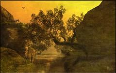 Eagle Reaches (ilyra.chardin) Tags: sunset tree eagle rocky goat ravine gorge