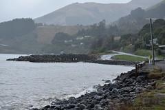 Wainui near Akaroa (Spreydon) Tags: wainui cold wet winters akaroa