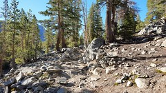 20160625_080125 (lovz2hike) Tags: lovz2hike duck lake pass trail barney pika mono county mammoth lakes coldwater campground fishing hiking backpacking wonderlust fresno inyo sierra nevada john muir wilderness