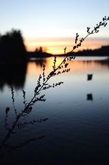 Mine Falls Sunset (DanForgetPhotography) Tags: sunset river newhampshire nashua minefallspark danforgetphotography