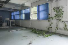 Ivy (socialnightmare) Tags: mortuary abandoned hospital decay