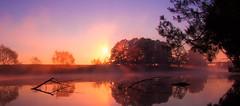 Misty River Morning. (williams.darrell53) Tags: mist reflection tree water fog sunrise canon river landscape williams australia darrell samyang