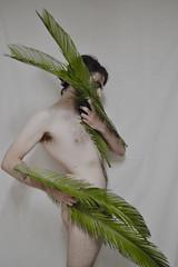 170 // 366 - Icarus can't fly (Job Abril) Tags: selfportrait nude fly wings nikon palm 365 icarus autorretrato cuerpo desnudo paleskin malebody conceptualphotoraphy artisticphotohraphy