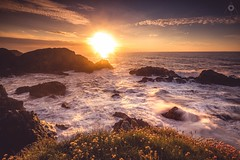 Blinded by the Light (Augmented Reality Images (Getty Contributor)) Tags: canon coastline flowers grass landscape leefilters longexposure morayshire nature portknockie rocks scotland sea seapink seascape sunset water waves