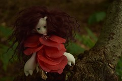Vlindrel boom 2 (sbslink) Tags: doll scorpio tiny bjd abjd dz legit dollzone vlindrel