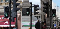 Gay and trans symbols on traffic lights (ian_fromblighty) Tags: uk light england london traffic symbol pedestrian pride symbols gaypride crossings samesex tfl 2016 greencrossing