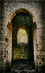 Day 179, 2016, a photo a day. (lizzieisdizzy) Tags: outside outdoors arches window doorway entry bricks treees bushes foliage abandoned forgotten ruin pebble stone flints sunlight