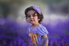 Sound  of the flowers. (Zaki :)) Tags: flowers baby violet lavender fields flowerfields