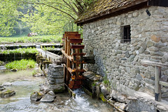 Mill (gregork.) Tags: spring maj mlin 2013 pomlad mozirje mozirskigaj