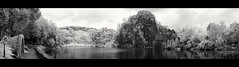 Little Guilin Infrared Panorama (LifeInMacro | Thainlin Tay) Tags: park panorama singapore little guilin infrared merge