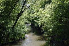 The Don River DSC8544.Explored (iloleo) Tags: park city trees toronto beauty river landscape spring scenic sunnybrook donriver nikond7000