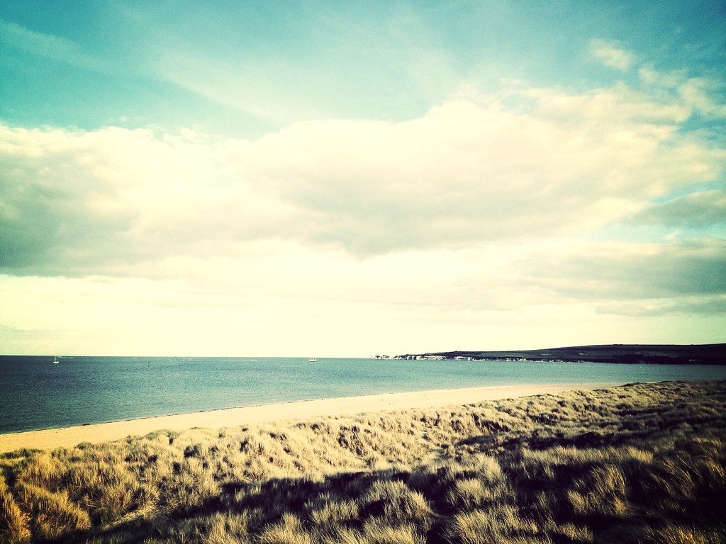 our vantaged point from Studland Head