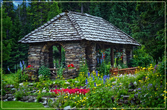 Cascade Rock Garden (sir_quasar) Tags: flowers canada landscape nikon alberta banff cascaderockgarden zeiss85mm14 d5100