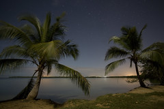 Grand Cul-de-sac marin by night (JR-pharma) Tags: west tree night canon de french eos à nightshot coconut marin sac grand 5d caribbean coconuttree cul tamron nuit plage vieux guadeloupe antilles bourg indies gwada 971 cocotiers caraibes westindies morne anse leau 1735 frenchwestindies tamron1735 babin antillas f284 morneàleau vieuxbourg culdesacmarin