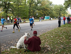 Doggin It (HOARYHEAD) Tags: minnesota bill minneapolis runner ekko twincitiesmarathon minneapolismn tcmarathon nikond700 nikon28300mm 1062013 twincitiesmarathon2013