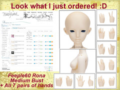 Look what I finally ordered!! :D (EmeraldGirl183) Tags: sd bjd fairyland rona mediumbust extrahands feeple60 feeple60rona