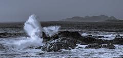 Vigorosidad! (Di Pietro73) Tags: bw mar galicia olas rocas baiona nikond600 narutaleza