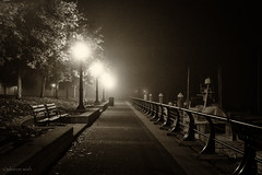 emptiness is all around (bluechameleon) Tags: autumn fog night vancouver boats lights alone moody harbour empty railing benches coalharbour bluechameleon sharonwish bluechameleonphotography