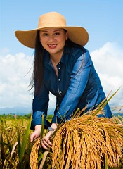 Mapapa-Agri Ka! (TheHouseKeeper) Tags: food portraits rice faces farm philippines farming harvest crop grains pinay agriculture mateo pinoy pilipinas palay agri thehousekeeper georgemateo michellegankee