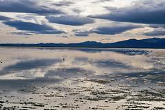 Bonneville Salt Flats (Curtis Gregory Perry) Tags: sunset utah agua nikon wasser salt flats bonneville speedway  vatn d800e