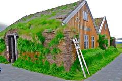 Iceland-house with peat-roof (venturidonatella) Tags: roof iceland peat islanda