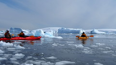 Antarctica (Dan Cosmin) Tags: blue sun ice water penguins kayak outdoor antarctica seal kayaking whale iceberg