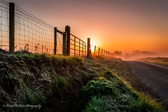 Country Roads. (lmc 5/69) Tags: morning ireland irish sunlight mist green nature fog sunrise landscape landscapes spring scenery skies colours ngc foliage northernireland tyrone omagh greenscene