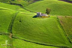 Casa nel verde (walterlocascio) Tags: verde green landscape country campagna sicily sicilia paesaggio rurale caltanissetta sicilianit walterlocascio turolifi