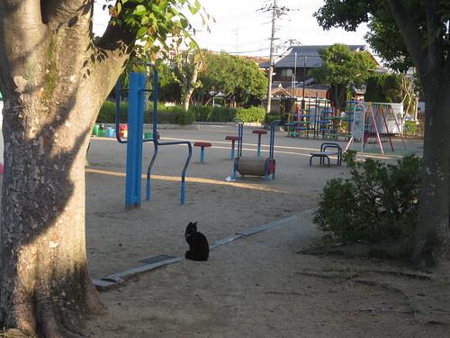 公園にひとり