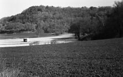 5221.Field (Greg.photographie) Tags: blackandwhite bw film field rollei analog 50mm noiretblanc 200 18 miranda champ sensomat superpan r09
