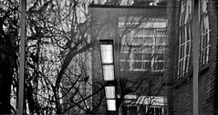 'Natural Light' (EZTD) Tags: england london nikon foto photos january photographs fotos londres islington clerkenwell londra londinium londonist fotograaf londonengland 2015 clerkenwellgreen londonphotos catto 18105mm aylesburystreet nikond90 eztd eztdphotography photograaf eztdphotos eztdgroup londonimagenetwork capitalwalks cattowalks