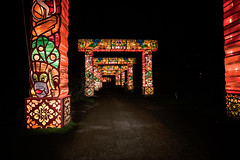 China Light 02 (@2008) Tags: holland netherlands utrecht a900 sal20f28 chinalight