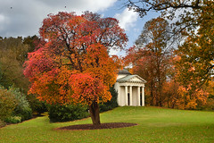Temple of Bellona (Beardy Vulcan) Tags: park november autumn england kewgardens london fall kew garden temple folly 2014 thamesvalley bellona templeofbellona