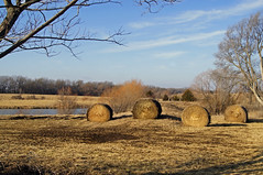 barns 083-2 (a girl and her lens) Tags: water field farm hay bales