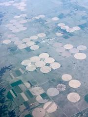 "Crop circles ""connect four"" (gsmithsirus) Tags: nebraska farming cropcircles airtravel connectfour greatplains"
