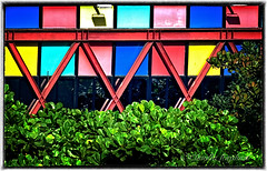 IMG_4034_edit (cnajhar) Tags: plants color building landscape colorful contrasts miscelnea