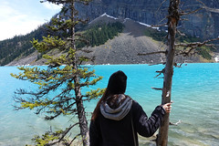 DSC03761 (NIKKI BRITTAIN) Tags: park canada color art nature photography banff lakelouise